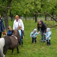 Zwillings- und Mehrlingstreffen 2019 - Besuch auf dem PferdeGut Foto: Daniela Graß (Bild: 15/17)