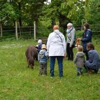 Zwillings- und Mehrlingstreffen 2019 - Besuch auf dem PferdeGut Foto: Daniela Graß (Bild: 16/17)