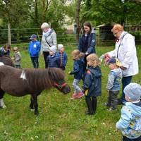 Zwillings- und Mehrlingstreffen 2019 - Besuch auf dem PferdeGut Foto: Daniela Graß (Bild: 14/17)